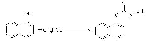 naphtol-1 and methyl isocyanate
